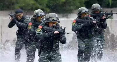改革時間表公布,武警部隊今后怎么建、如何用?